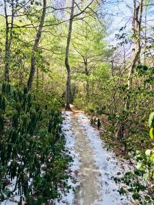 Upper Creek Falls Trail