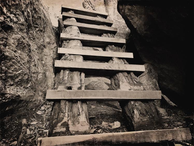Boone Fork Trail - ladder