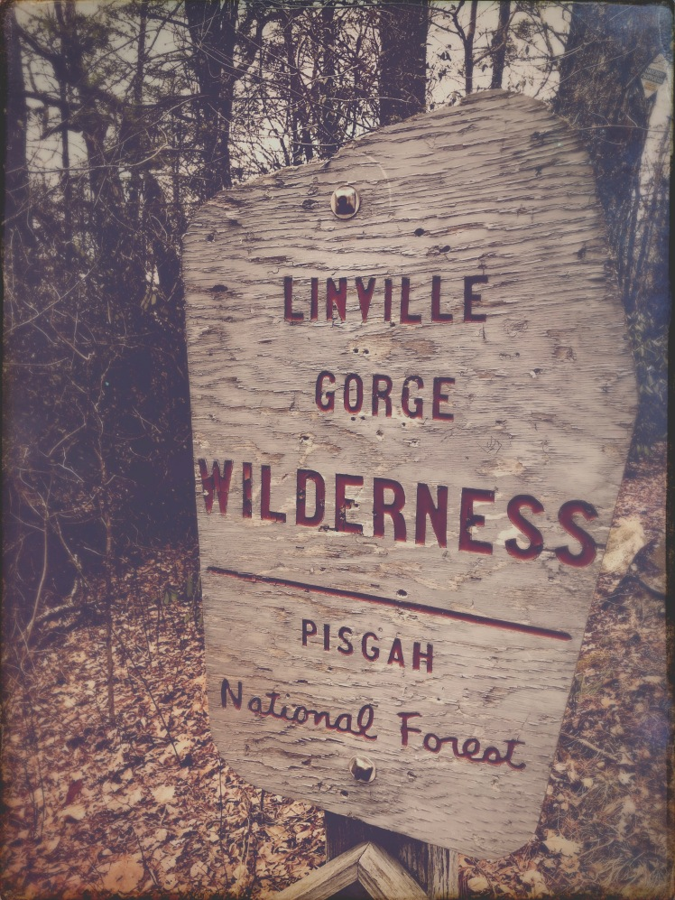 Bynum Bluff Trail - trailhead
