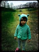 Green Knob Trail - Alice