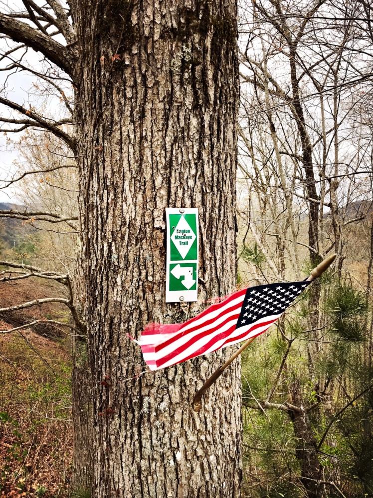 Benton Mackaye Trail