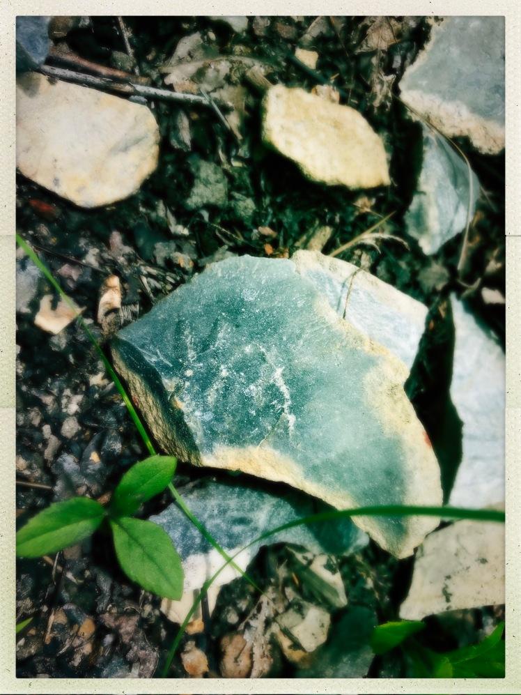 Marrow Mountain State Park - rhyodacite