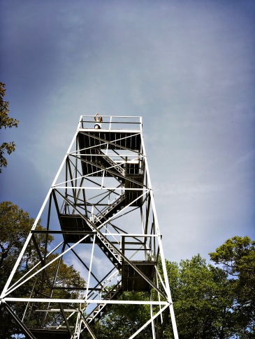 Flat Top Mountain Trail - fire tower