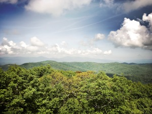 Flat Top Mountain Trail - view from tower