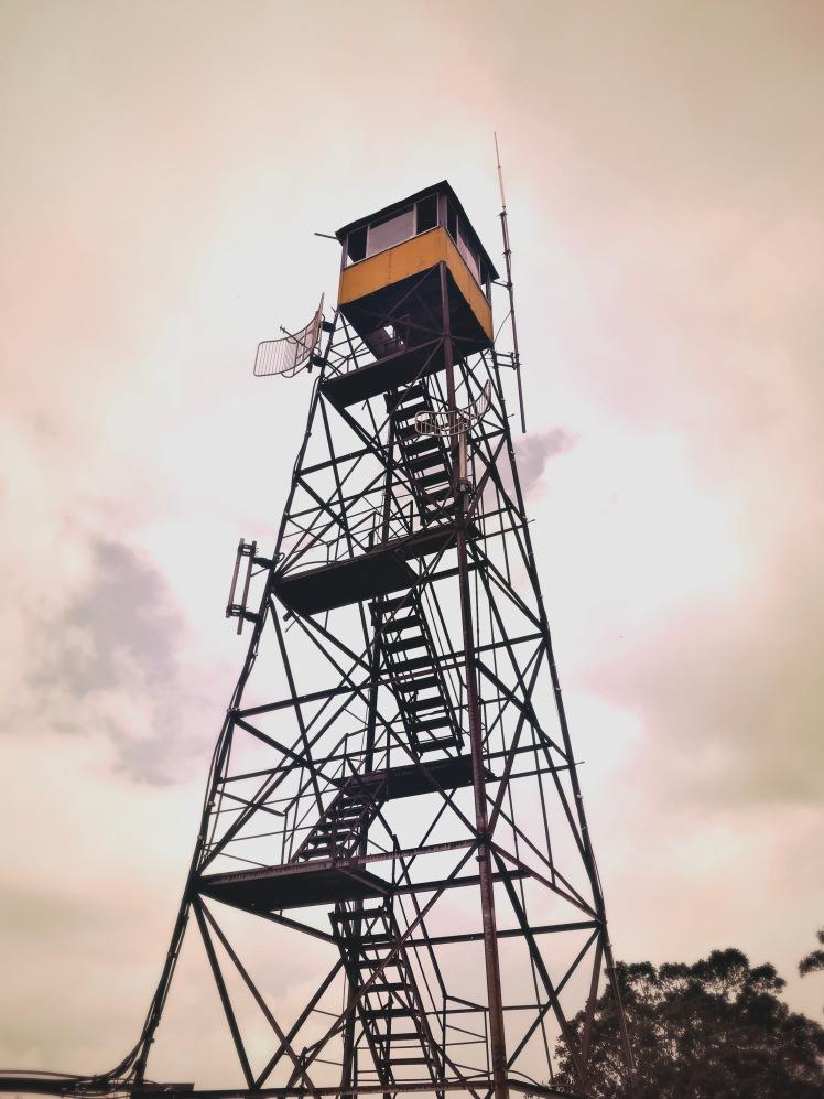Bearwallow Mountain - fire tower