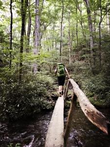 Caldwell Fork Trail - Johnny