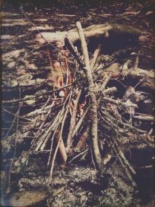Campsite 41 - fire