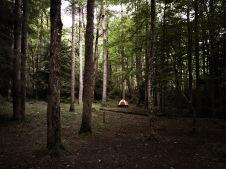 Campsite 41 - view of neighboring tent