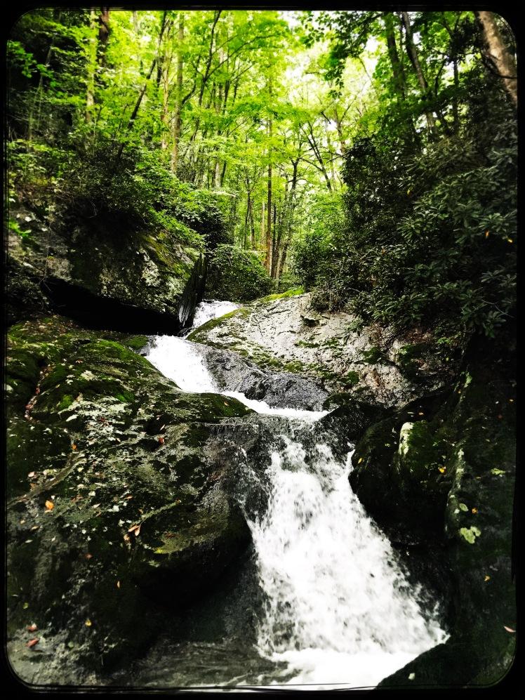 China Creek Trail - cascade