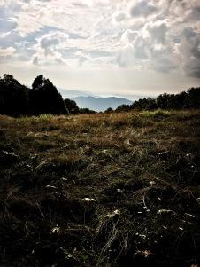 Hemphill Bald Trail - view