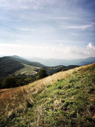 Hemphill Bald - view of area