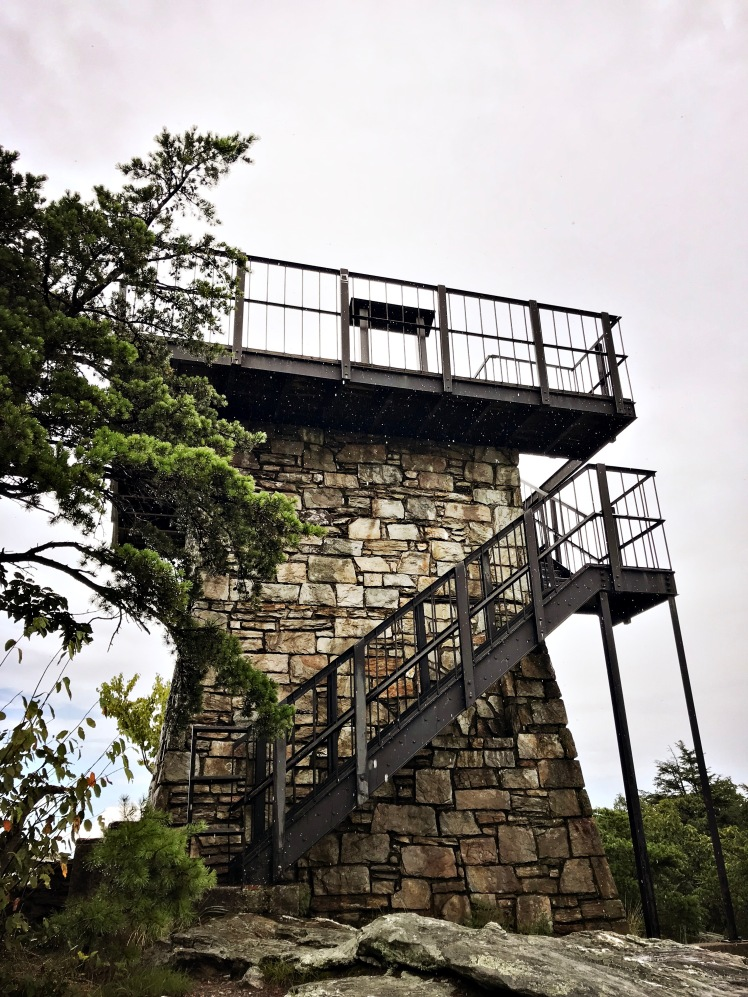 Moore's Knob Loop Trail - observation tower