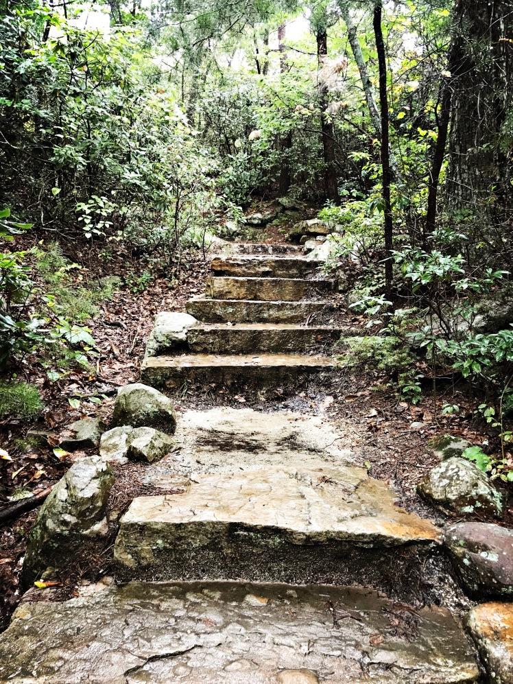 Moore's Knob Loop Trail - steps