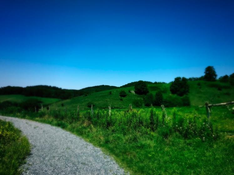 Rich Mountain Trail - path through field