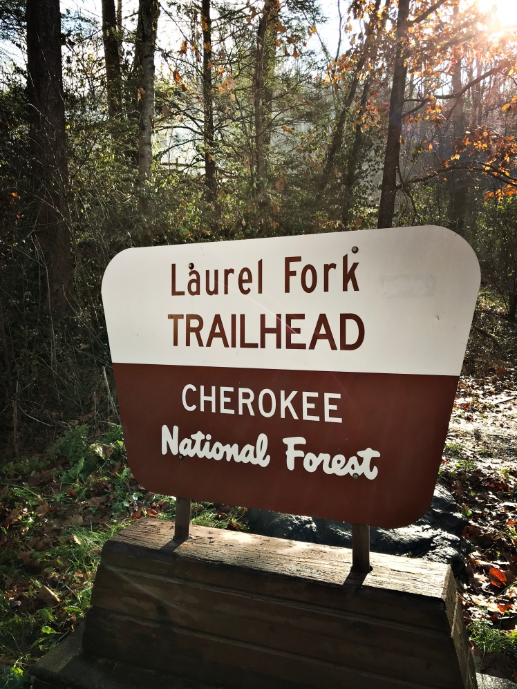 Laurel Fork Trailhead