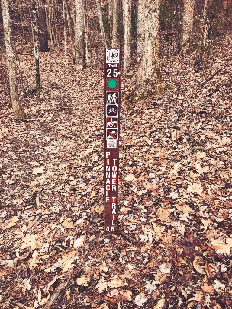 Pinnacle Mountain fire tower trail - trail head