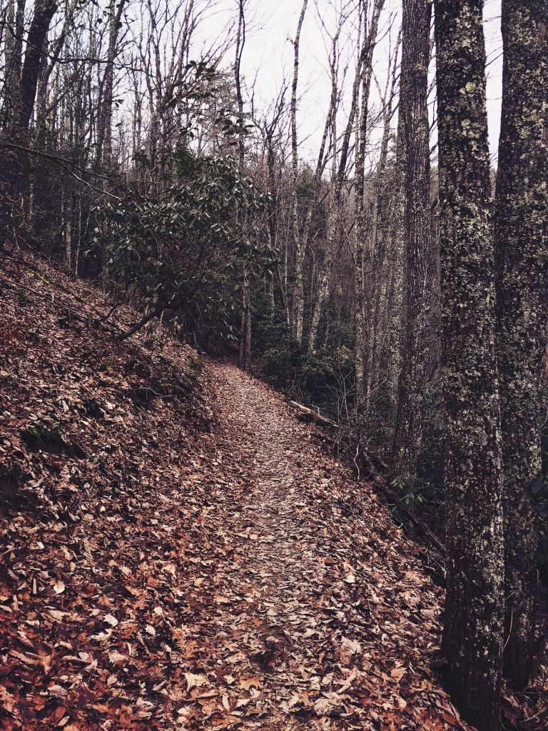 Pinnacle Mountain fire tower trail - trail
