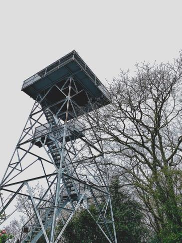 Albert Mountain Tower