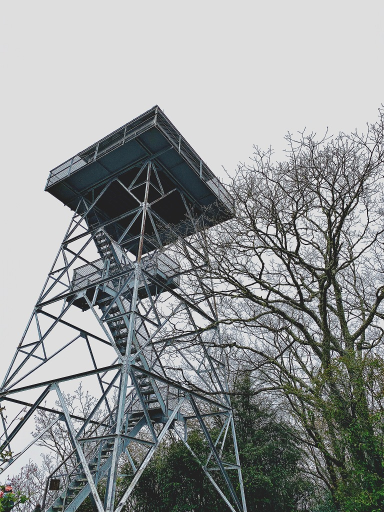 Albert Mountain Tower