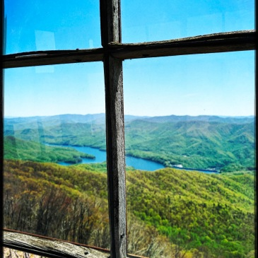 Shuckstack Tower - windows