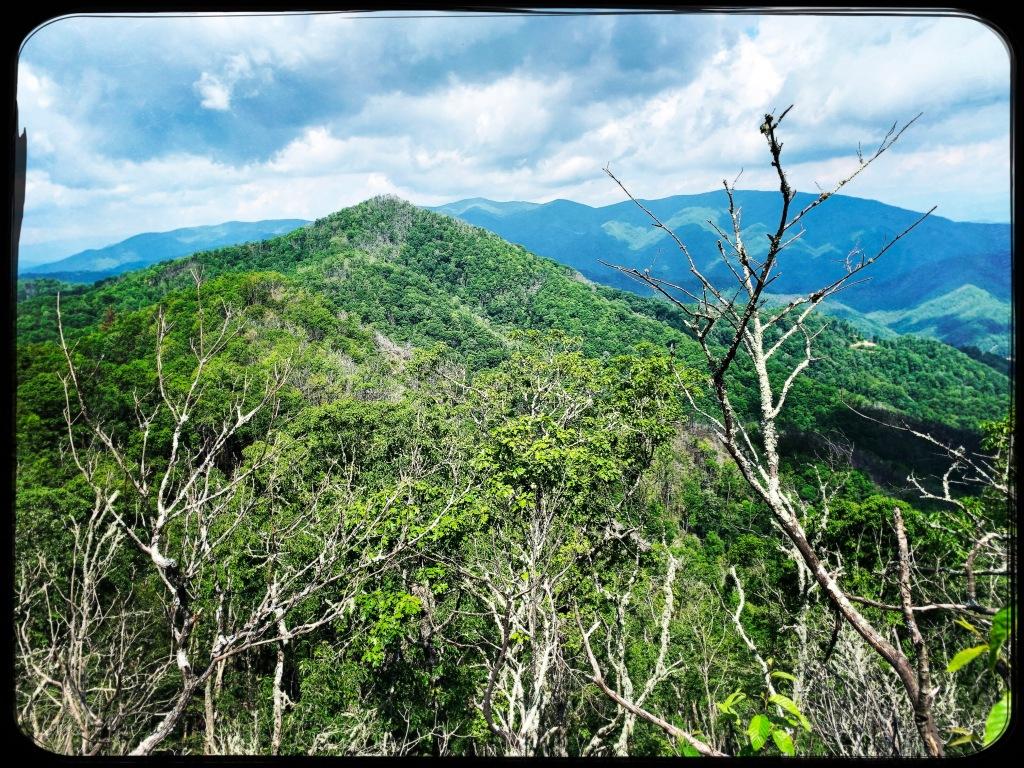 Appalchian Trail - view