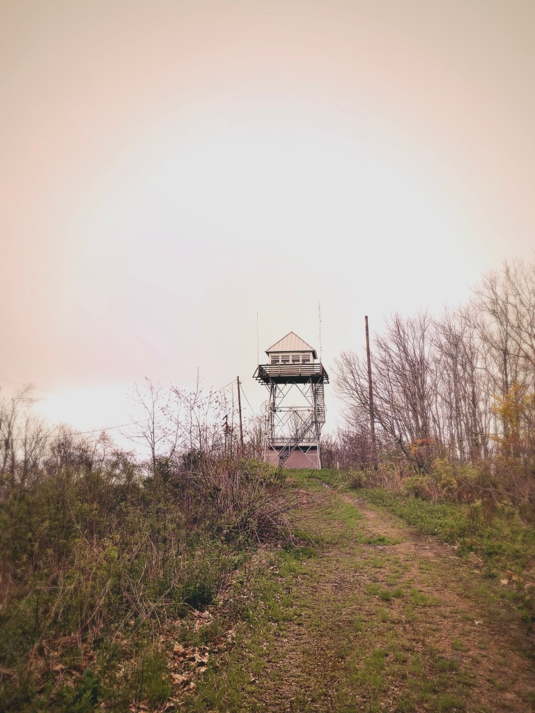 Cowee Bald Lookout Tower - view