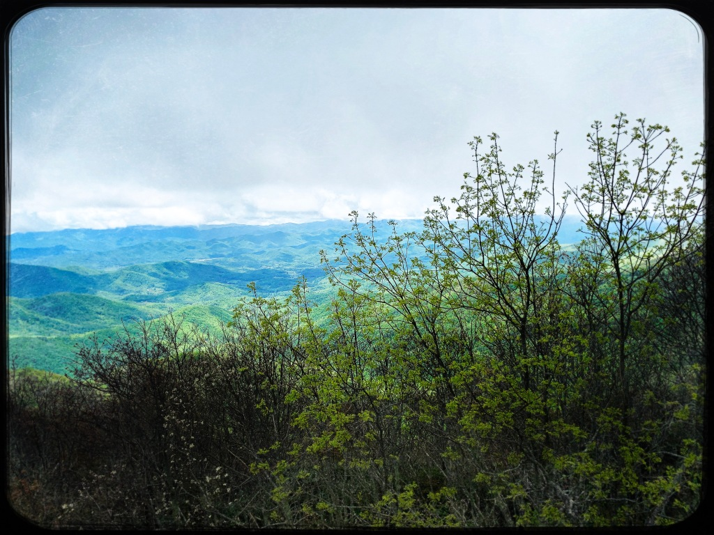 Cowee Bald - view