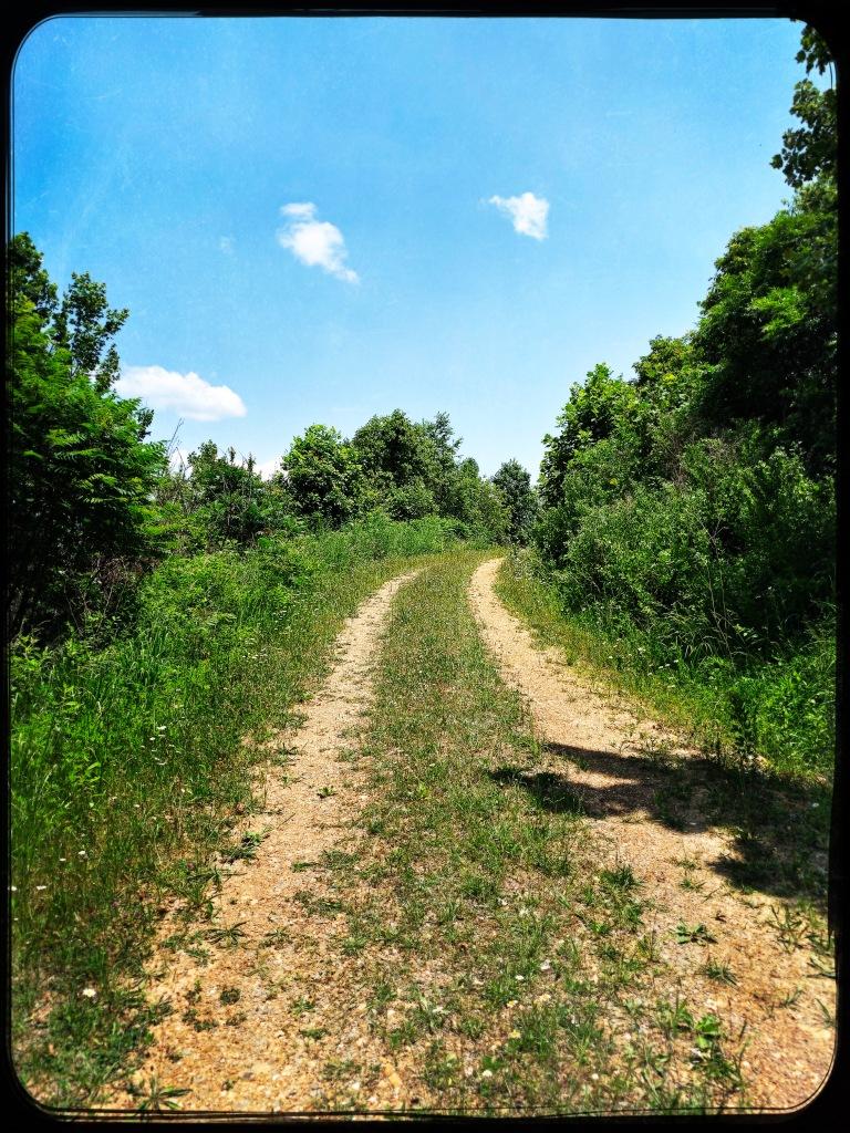 FR 85A - trail
