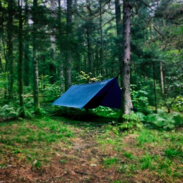 Spruce Mountain Trail - Eno ProFly XL