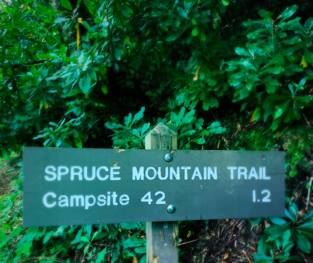 Spruce Mountain Trail - trailhead