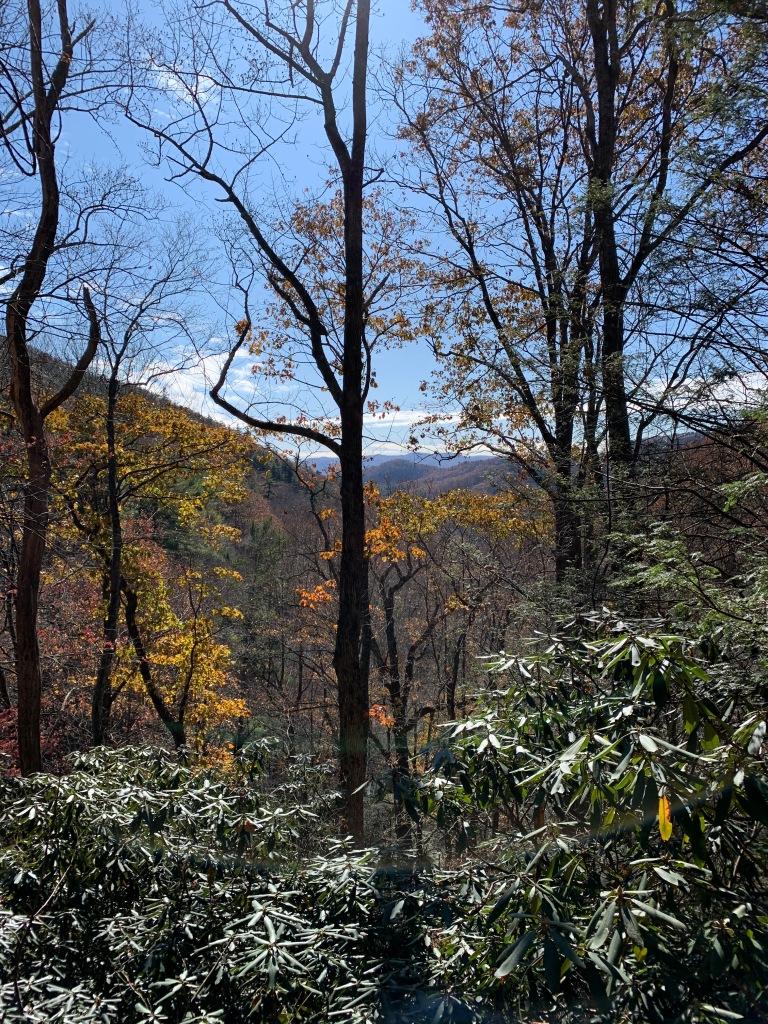 China Creek Trail - view