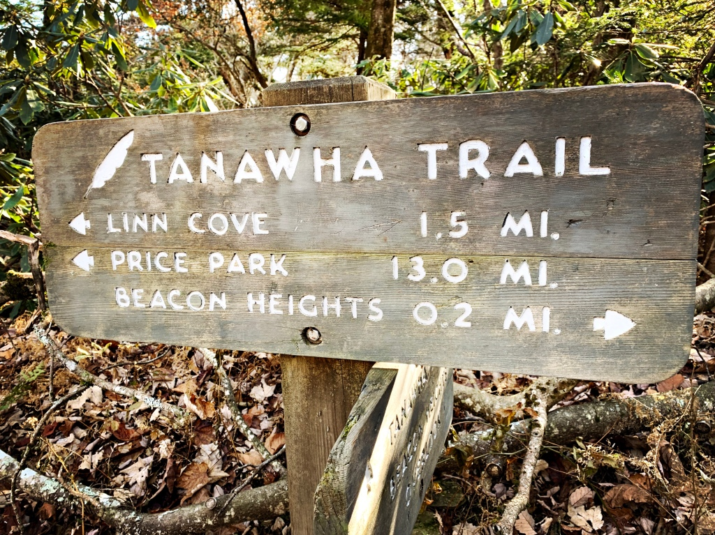 Tanawha Trail - Beacon Heights