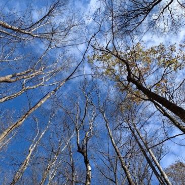 Thunderhole Trail - sky