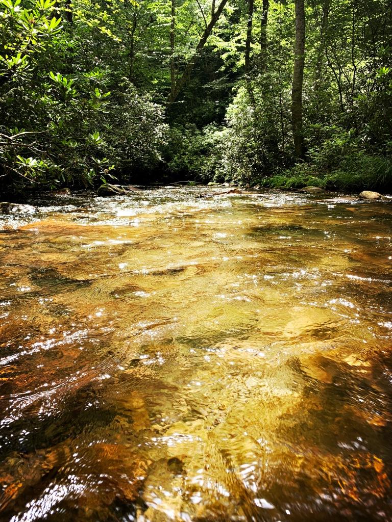 Caldwell Fork Trail - creek crossing
