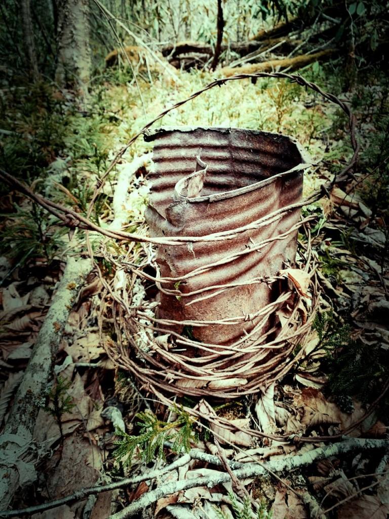 McKee Branch Trail - remnants