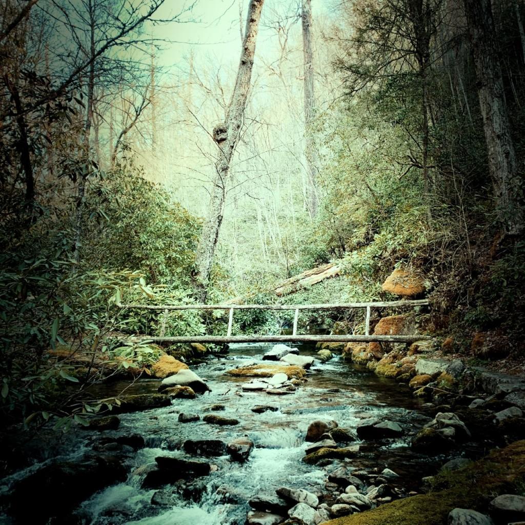 Palmer Creek Trail - bridge