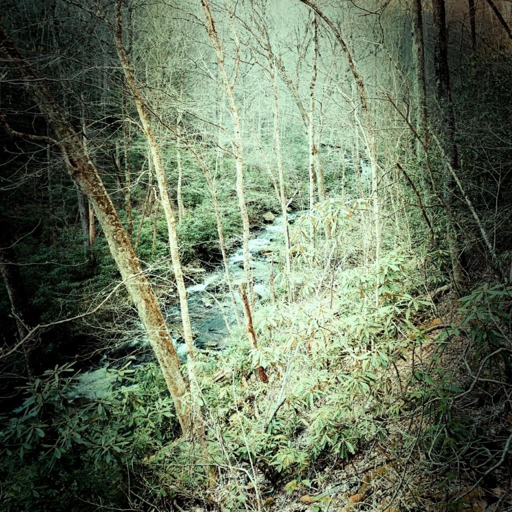 Palmer Creek Trail - creek