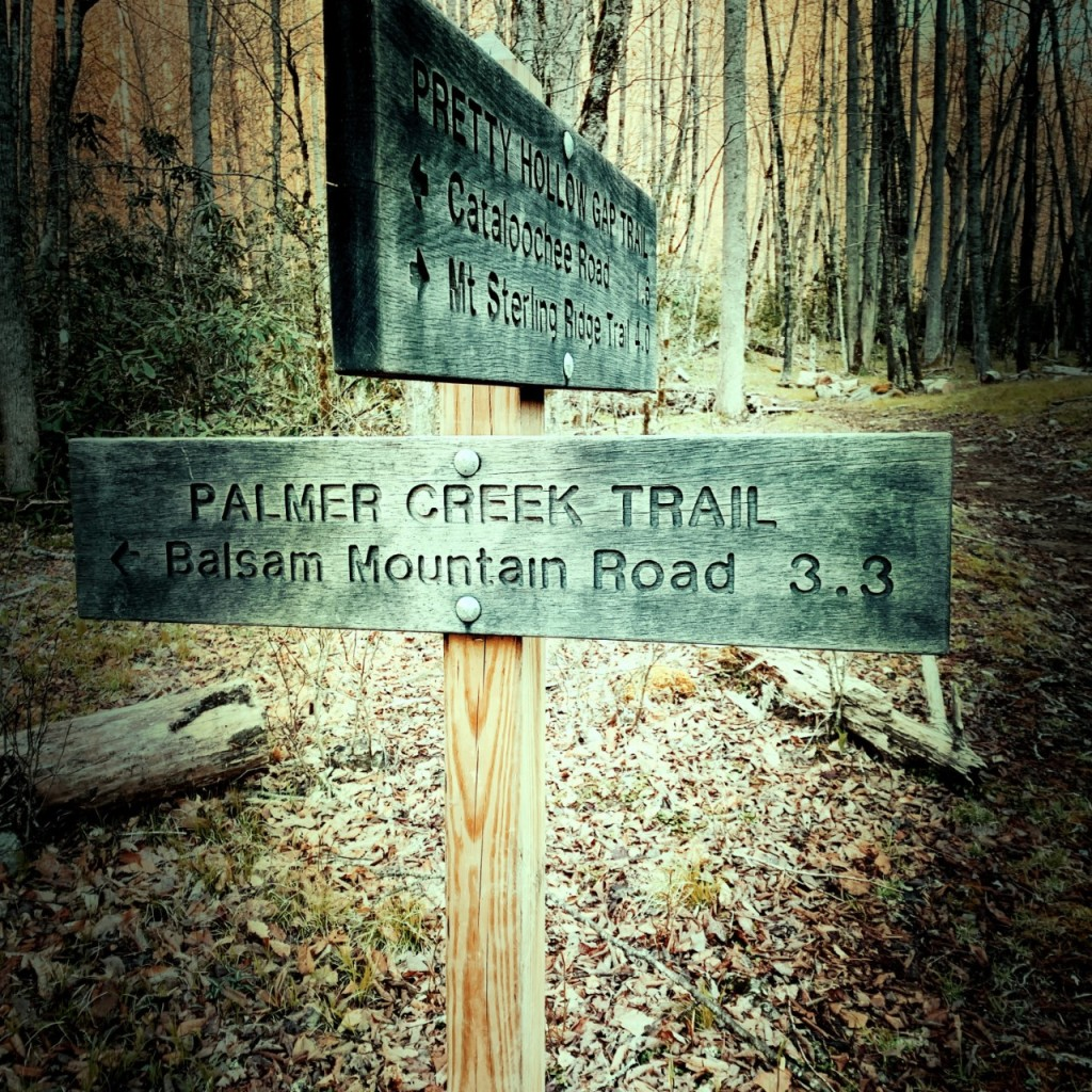 Palmer Creek Trail - trailhead
