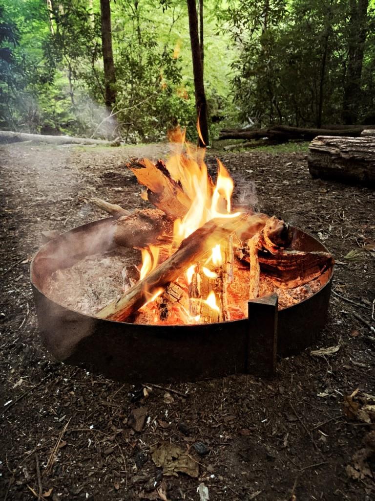 campsite #60 - fire
