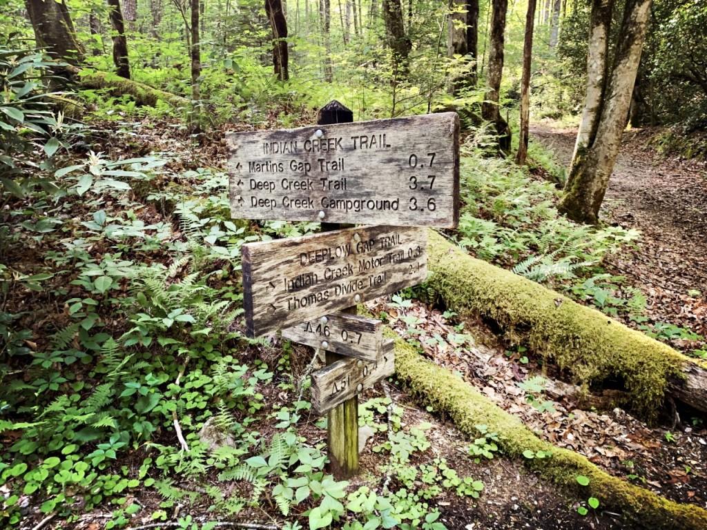 Deeplow Gap Trail - trailhead