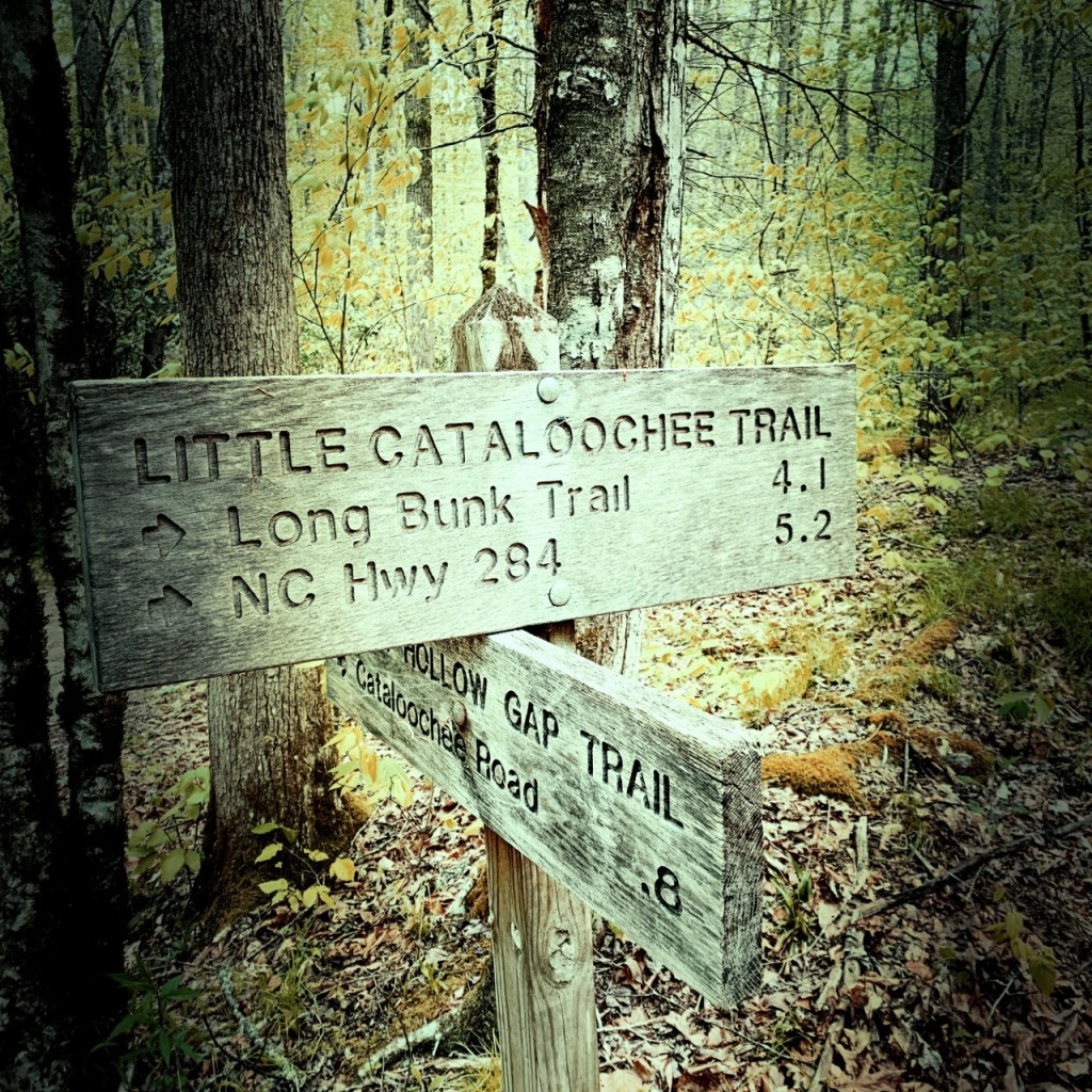 little-cataloochee-trail-trailhead
