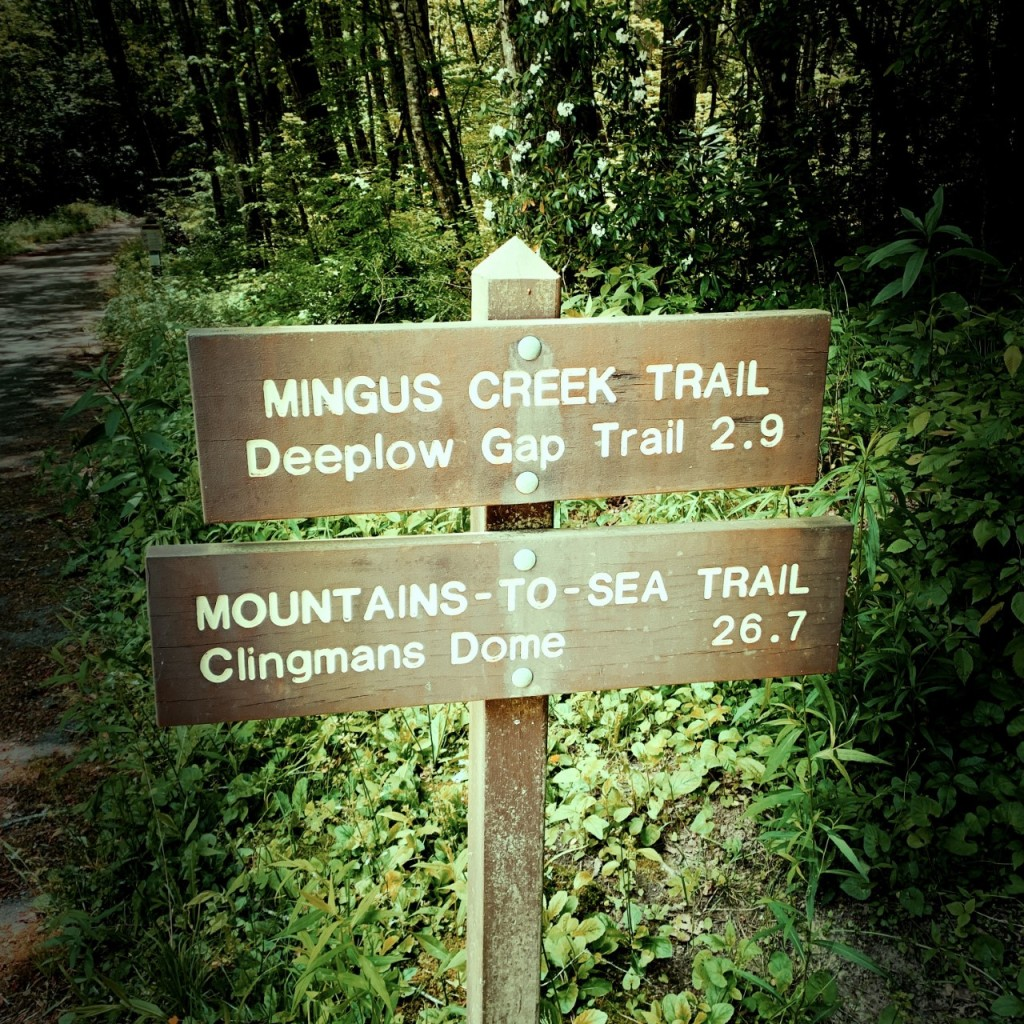 Mingus Creek Trail - trailhead